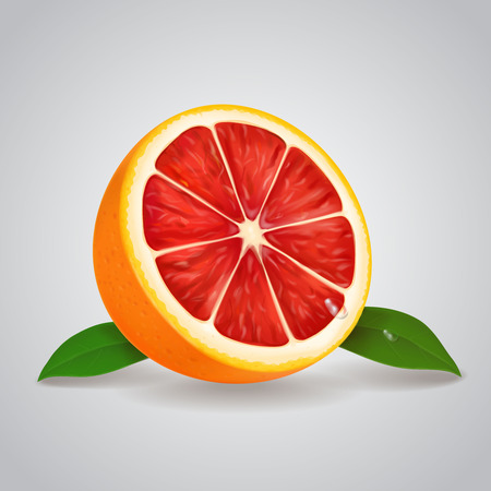 Grapefruit realistic 3d illustration with leaves Vector illustration