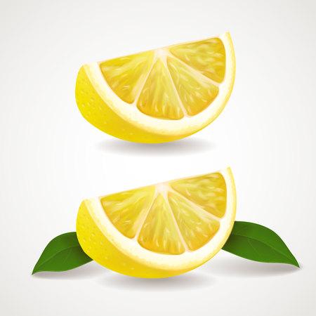 peasant: Lemon fruit slices isolated Realistic vector illustration Illustration