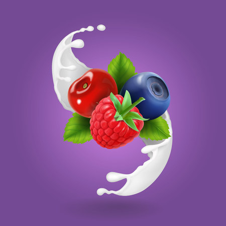 Ripe forest berries and milky splash or yogurt. Realistic design icon vector