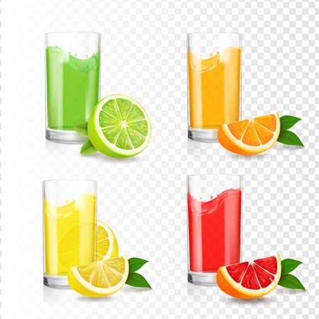 Citrus juice in glass set, vector illustration.