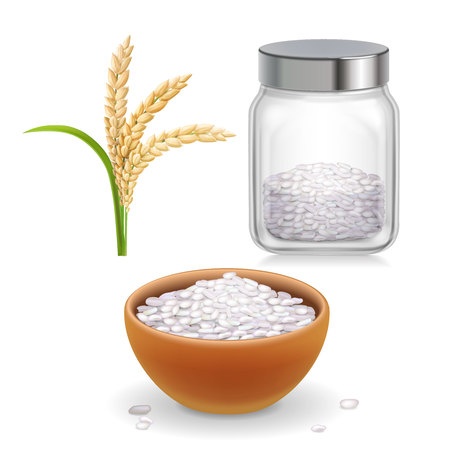 Rice ear, bowl, jar with long-grained and short-grained rice grain realistic set. Ilustrace