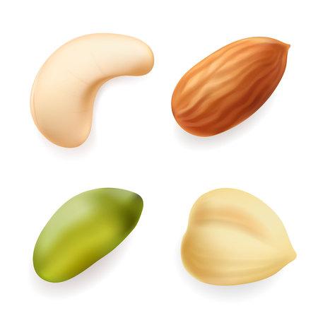 Nuts set. Hazelnut, pistachio, almond, cashew