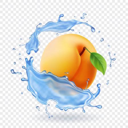 Apricot icon.