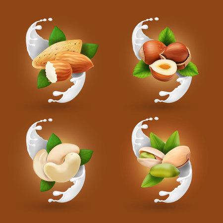 Nut collection realistic in milk splash or ice cream. Hazelnut, pistachio, almond, cashew. Illustration