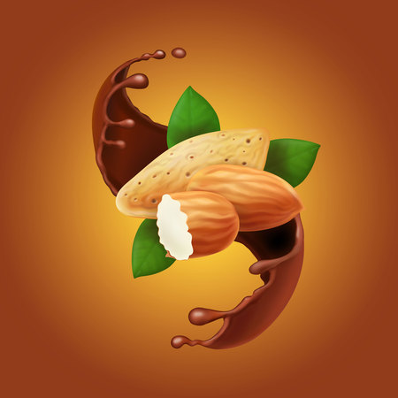 Almonds in chocolate splash. Cocoa flow and nuts realistic Vector illustration