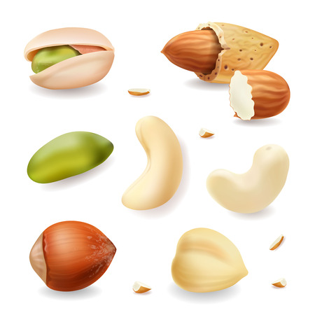 Nuts realistic vector set isolated on white background. hazelnut, pistachio, almond, cashew nuts. Illustration