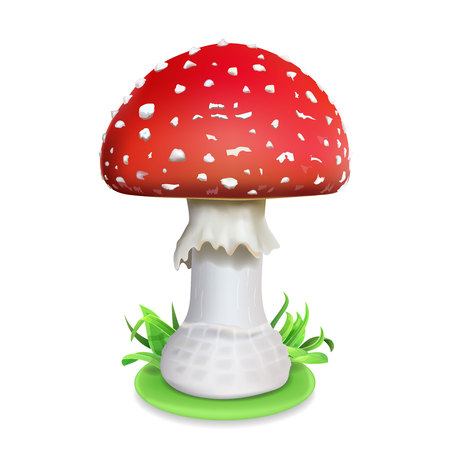 Red fly agaric mushroom. Realistic icon illustration on a white background