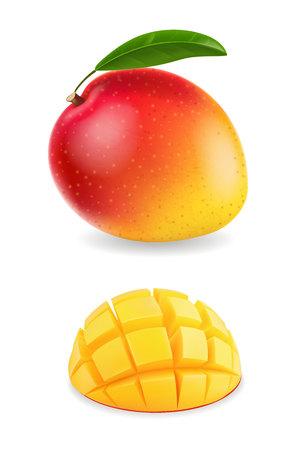 Fresh mango fruit with slices realistic isolated illustration Ilustração