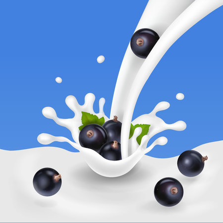 Black currant dropping in milky splash 3d illustration Illustration