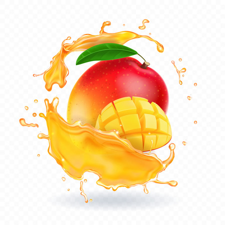A splash of juice with mango and ripe mango slices. Vector realistic illustration