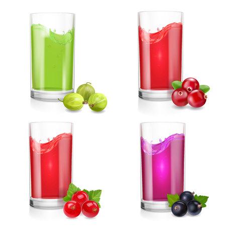 Glass of berries juice. Cranberries, gooseberry, red current, black current Vector illustration.
