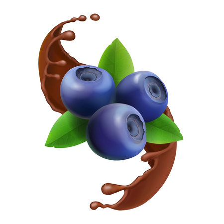 Blueberry in chocolate splash 3d icon berry illustration Illustration