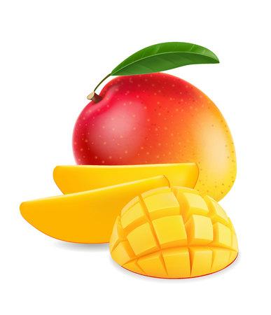 Fruit mango with mango slice realistic illustration 일러스트