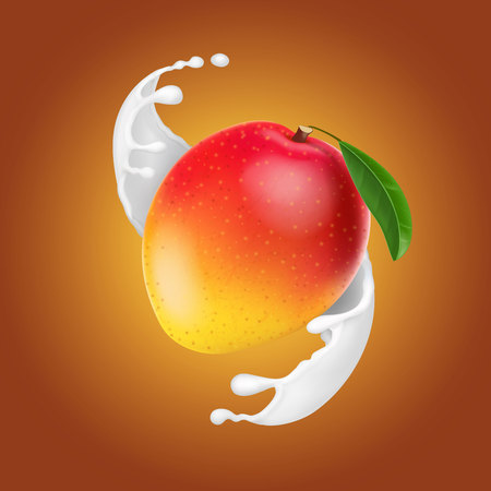 Fruit in milk splash. Yogurt dessert realistic vector illustration.