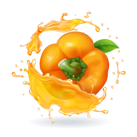 Orange bulgarian pepper realistic 3d vector illustration