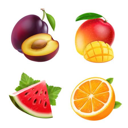 Fruits orange, plum, and watermelon set vector illustrations