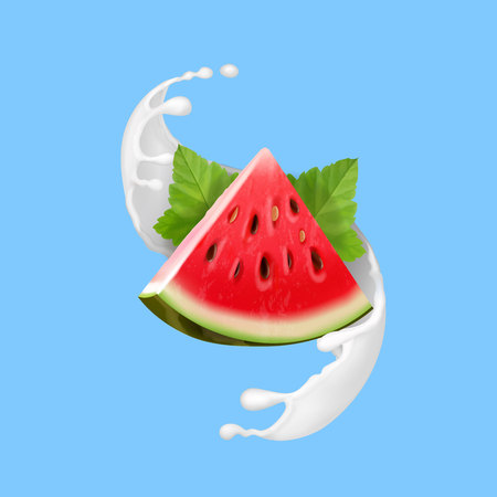 Watermelon in yogurt or milk vector realistic illustration icon.