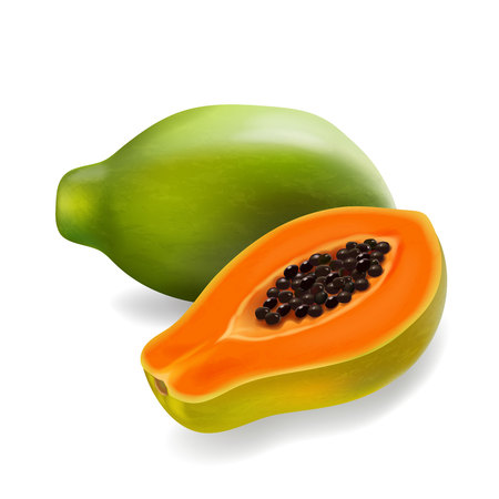 Papaya slice and whole fruit realistic illustration icon.