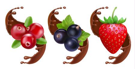 Raspberry, strawberry and black currant in chocolate splash reaistic set