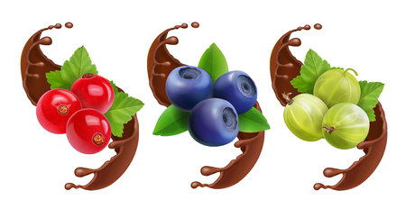 Blueberry, gooseberry and red currant in chocolate splash reaistic set