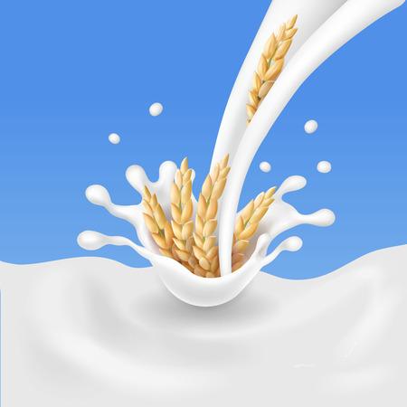 Céréales et lait, épillets de riz en illustration vectorielle de lait éclaboussant.