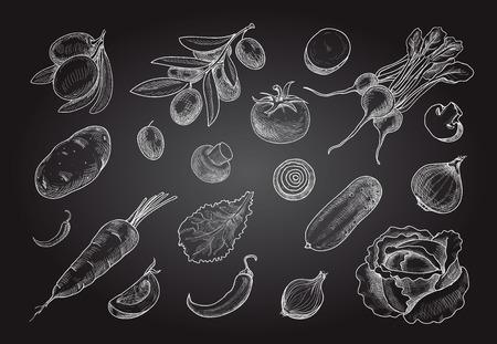 Sketch style vegetables. Hand drawn collection on chalkboard. Vector set of healthy food.