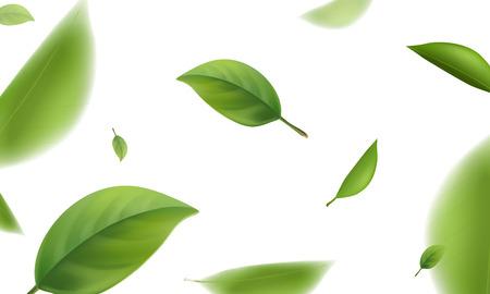 Foglie verdi sfocate che volano su sfondo bianco, illustrazione realistica di vettore 3d.