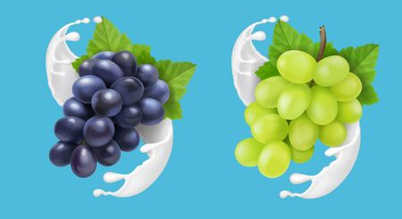 Grape in milk splash or ice cream. Red and green grapes branch in yogurt flow