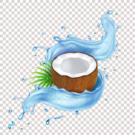 Coconut with green leaves and blue water splash.