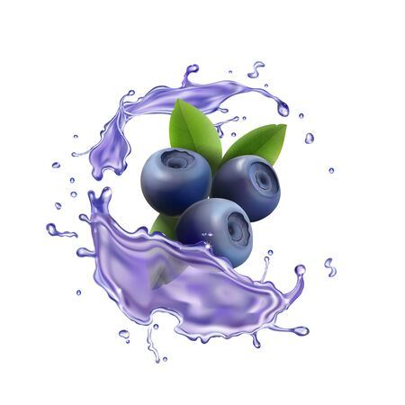 Blueberry berry juice splash Realistic illustration.