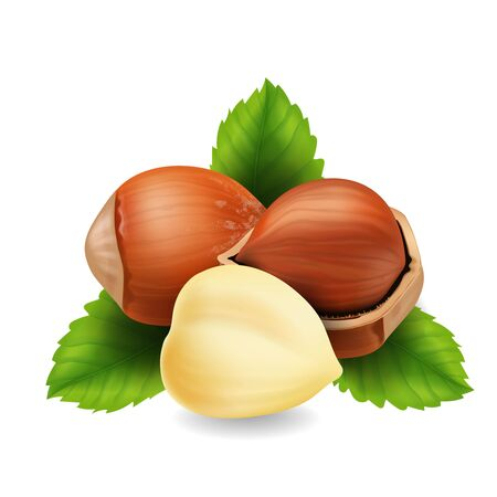 Hazelnuts with leaves realistic   on white