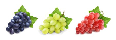 Different wine grapes set on white