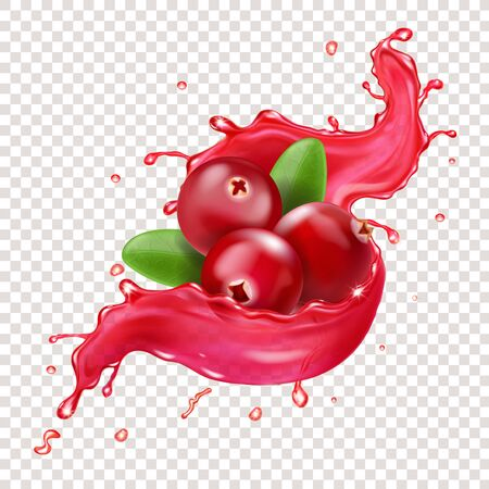 Cranberry in juice splash. Sweet berry realistic vector illustration Ilustrace