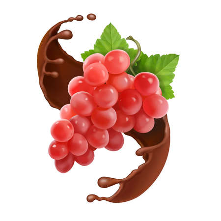 Red grape branch in chocolate splash. Rose grapes berries Vector 3d illustration