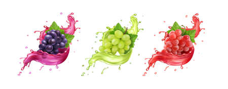 Red, white, rose and black wine grapes in juice splash. vector icons set
