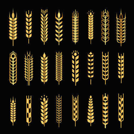Wheat golden ear logo icons set isolated on a black background, Gold color cereals silhouettes, vector illustration 向量圖像