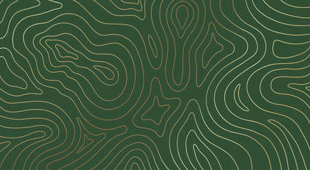 Abstract gold topographic lines on a green background. Golden line waves topographical design. Geographic mountain contours Vector Illustration