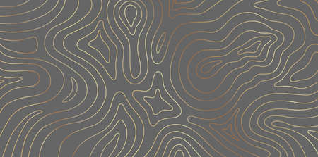 Luxury gold abstract topographic map texture on gray background. Golden lines waves topographical design for fabric , packaging 向量圖像