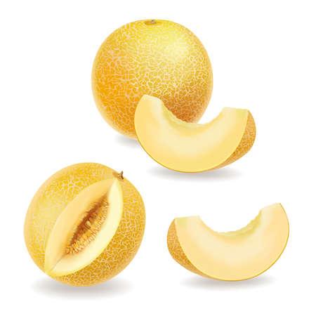 Melon, realistic yellow ripe melon slices set. vector icon 向量圖像