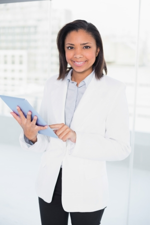 Pleased young dark haired businesswoman using a tablet pc in bright office Stock Photo - 25452433