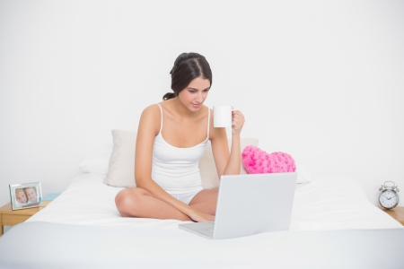 Focused young brown haired model in white pajamas using a laptop while drinking coffee in bright bedroom photo