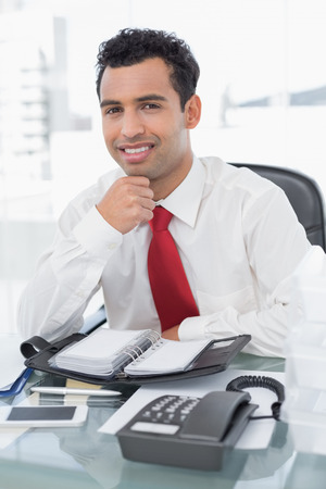 Portrait of a smiling young businessman with diary sitting at a bright office photo