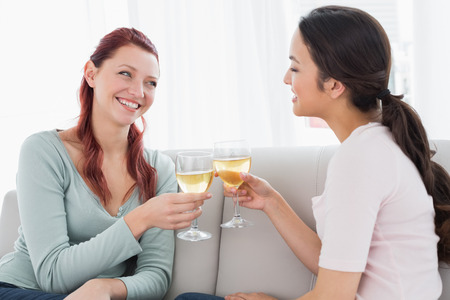 Two happy young female friends toasting wine glasses on sofa at home photo