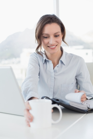 Smiling elegant businesswoman with laptop and diary in a bright office photo