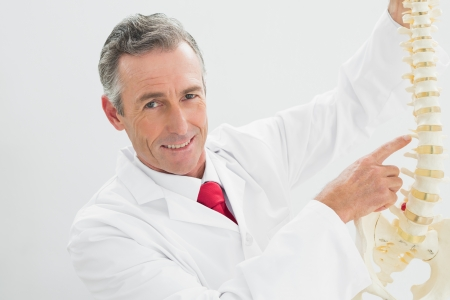 Portrait of a smiling male doctor holding skeleton model over white background photo
