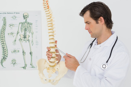 Serious male doctor looking at skeleton model in the medical office photo