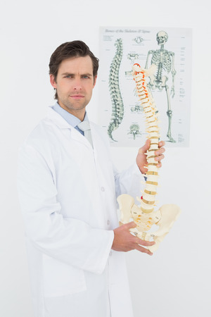 Portrait of a confident male doctor holding skeleton model in his office photo