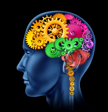 Secciones de lóbulo cerebral hizo de ruedas dentadas y engranajes que representa la inteligencia y las divisiones de actividad neurológica mental.