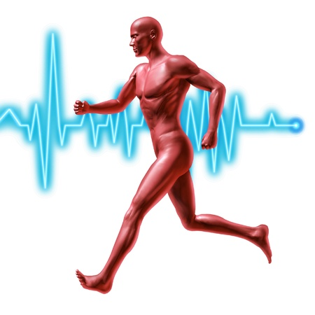 cardio fitness: Exercise and fitness symbol represented by a jogging human with a heart rate monitor life line showing healthy living and good cardiovascular fitness with isolated background.