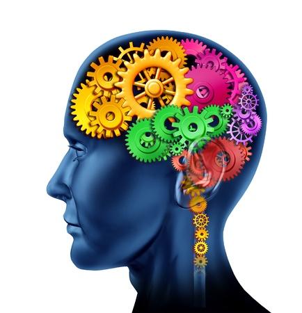 cerebro humano: Secciones de cerebro de ruedas dentadas y engranajes que representa la inteligencia y las divisiones de actividad neurol�gica mental aislado en blanco.